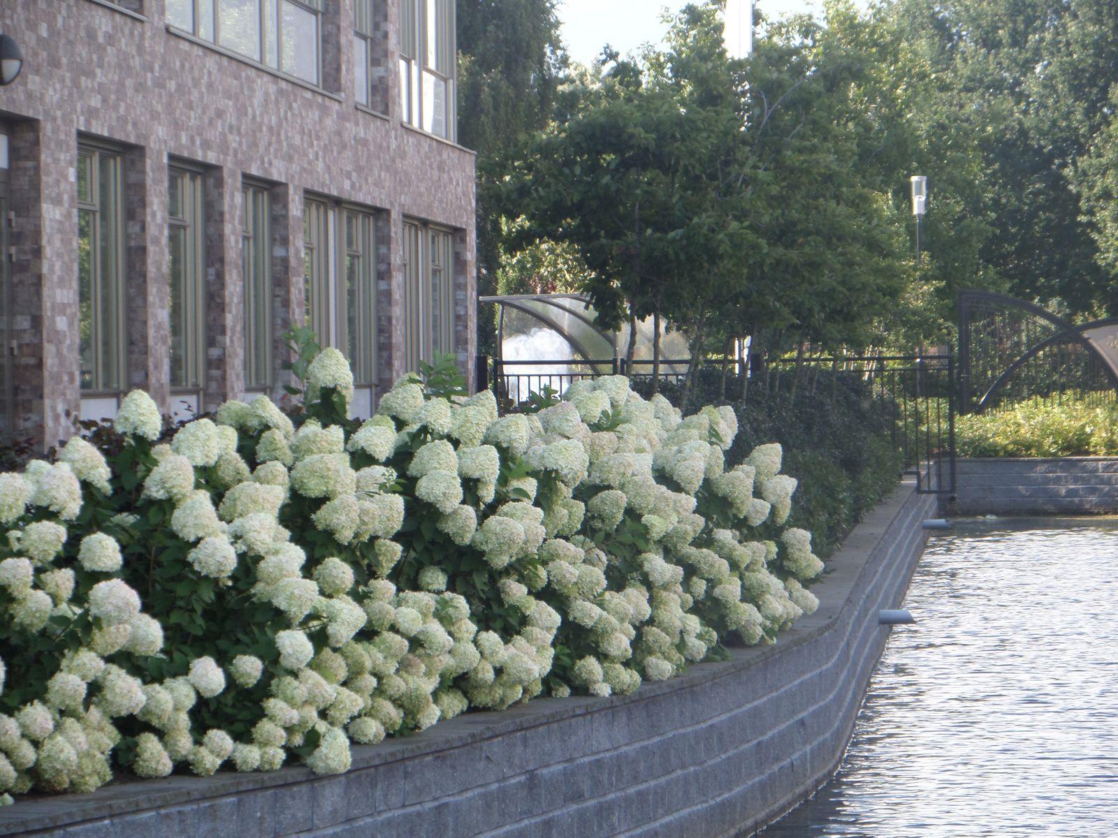 Project Van Lodenstein College